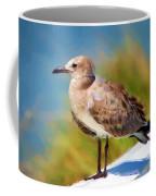 Sea Gull Of Boca Grande Coffee Mug