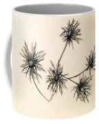 Sea Holly Coffee Mug