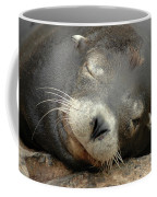 Sea Lion In San Francisco Coffee Mug