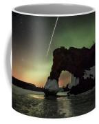 Sea Lion In The Dark Coffee Mug