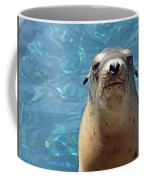 Sea Lion Or Seal Coffee Mug