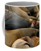 Sea Lions At Pier 39 San Francisco Coffee Mug