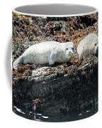 Sea Lions At Sea Lion Cove State Marine Conservation Area Coffee Mug