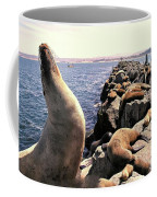 Sea Lions On Rock Pier Coffee Mug