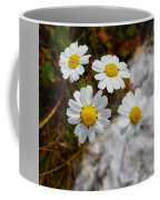 Sea Mayweed Coffee Mug