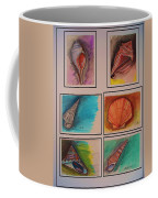 Sea Shells Coffee Mug
