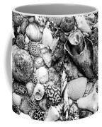 Sea Shells - Nassau, Bahamas Coffee Mug