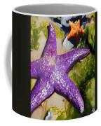 Sea Stars Coffee Mug