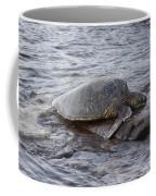 Sea Turtle On Rock Coffee Mug