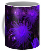 Sea Urchin 8 Coffee Mug