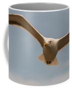 Seabird Closeup 01 Coffee Mug