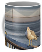 Seagull At Ravenel Bridge Coffee Mug