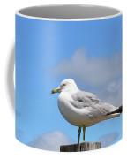 Seagull Beach Art - Sitting Pretty - Sharon Cummings Coffee Mug