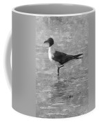 Seagull Black And White Coffee Mug