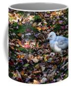 Seagull In The Fallen Leaves Coffee Mug