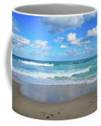 Seagull On The Atlantic Shore Coffee Mug