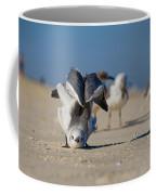 Seagull Yoga Coffee Mug by Beth Sawickie