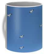 Seagulls 6 Coffee Mug