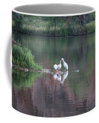 Seagulls At Lake Coffee Mug