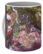 Seahorse1 Coffee Mug