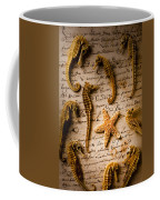 Seahorses And Starfish On Old Letter Coffee Mug by Garry Gay