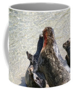 Seal Fight Coffee Mug