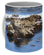 Seal Island Coffee Mug