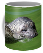 Seal Swimming Portrait Wildlife Scene Coffee Mug