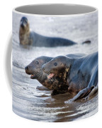 Seals Coffee Mug