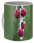 Seasonal Colors Coffee Mug
