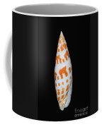 Seashell In Fishnet Coffee Mug