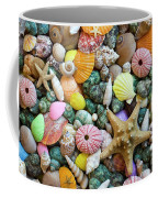 Seashells 3 Coffee Mug