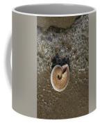 Seashells By The Sea Coffee Mug