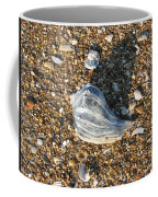 Seashells On The Seashore Coffee Mug