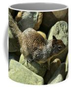 Seaside Ground Squirrel Coffee Mug