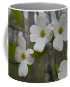 Season Of Dogwood Coffee Mug
