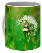 Season Of Flights Is Open. Coffee Mug