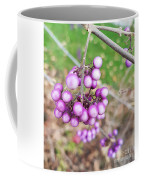 Seasonal Charm Coffee Mug