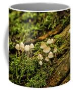 Seasonal Signs Coffee Mug