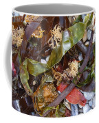 Seaweed And Pebbles Coffee Mug