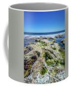 Seaweed And Salt. Coffee Mug by Gary Gillette