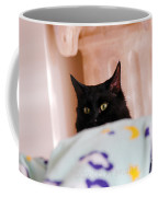 Secret Mission For Catnip Coffee Mug