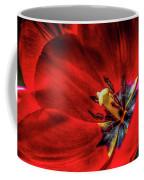 Secret Of The Red Tulip Coffee Mug