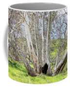 Secret Passageway Coffee Mug