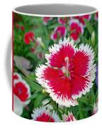 Sedona Dianthus Coffee Mug
