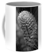 Seed Pod Black And White Coffee Mug