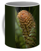 Seed Pod Coffee Mug