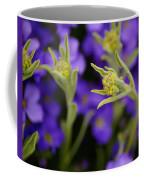 Seeking The Day's Energy Coffee Mug
