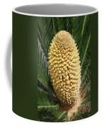 Sago Palm Flower Coffee Mug
