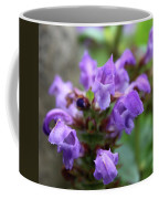 Selfheal Up Close Coffee Mug
